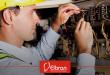 Instalação elétrica tem prazo de validade?